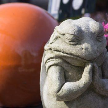 praying_frog