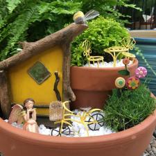 a fairy garden 2